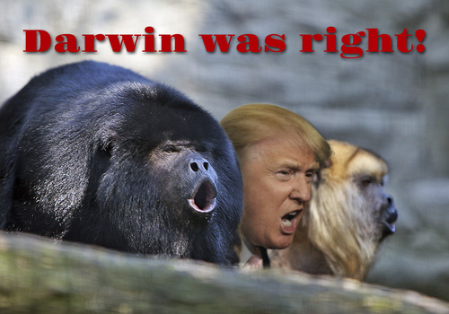 trump_and_the_howling_monkeys_2666895